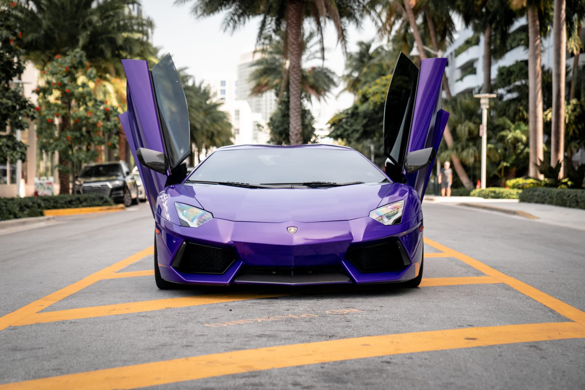 2016 Lamborghini Aventador Roadster Novitec   Charlotte, NC
